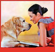 Како разумети кућне љубимце